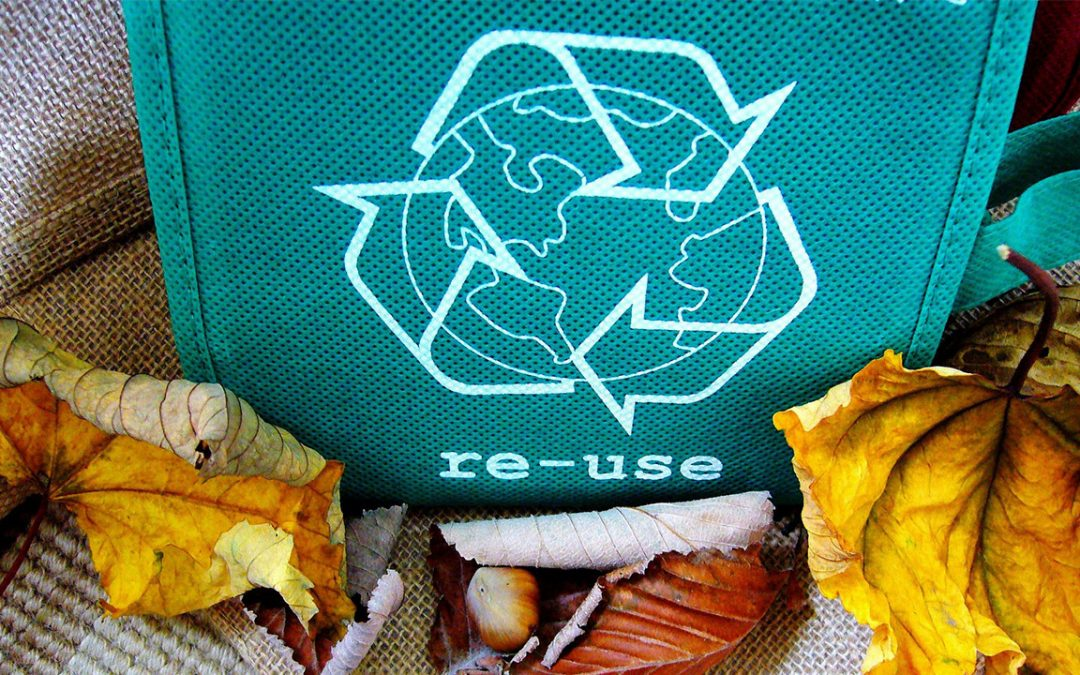 Recycling 101: Common Home Wastes and What to Do with Them